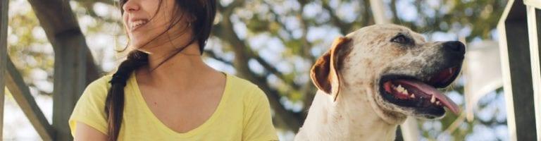 tos-perreras-verano-blog